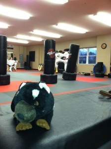 At the dojo with Chris