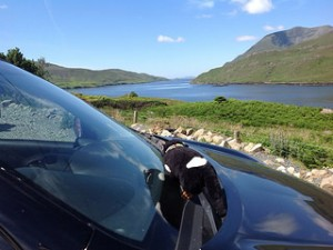 Davo checking out the fjord at Killary Harbour